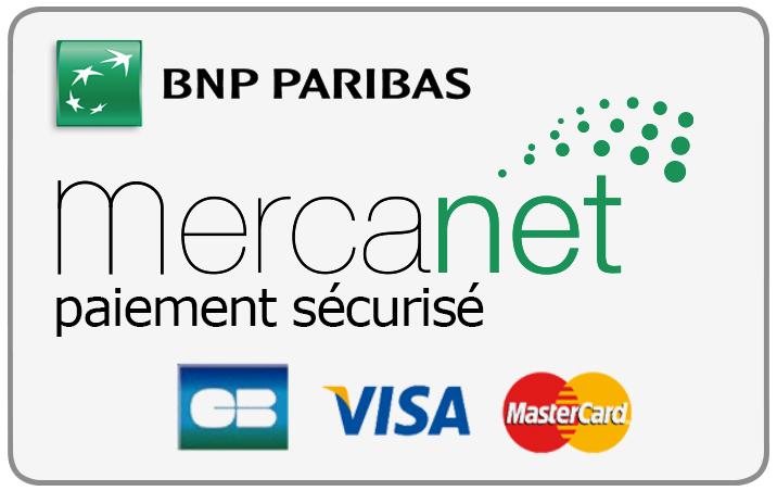 """Résultat de recherche d'images pour """"carte bancaire avec le service Mercanet"""""""